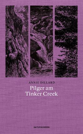 Pilger am Tinker Creek