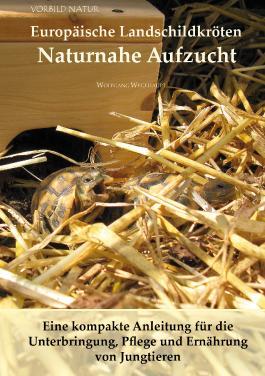 Europäische Landschildkröten Naturnahe Aufzucht