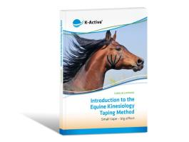 Introduction to the Equine Kinesiology Taping Method