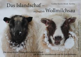 Das Islandschaf: Wollmilchsau