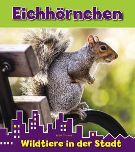 Eichhörnchen, Wildtiere in der Stadt