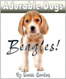 Adorable Dogs: Beagles (Cute!)