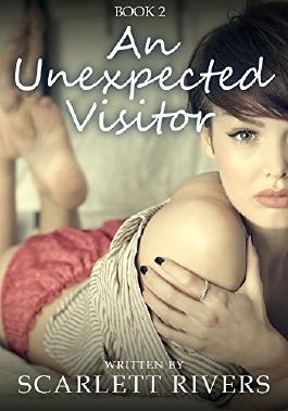 An Unexpected Visitor: Lesbian Romance Fiction Novel (Romance Beach Book 2)