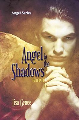 Angel in the Shadows, Book 1 by Lisa Grace: Angel Series: Volume 1
