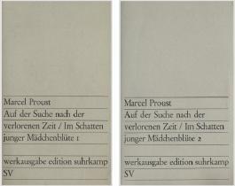 Werkausgabe: Auf der Suche nach der verloren Zeit / Im Schatten junger Mädchenblüte. Band 1 und 2