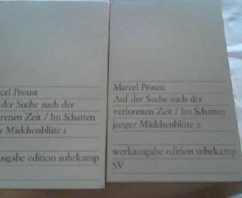 Auf der Suche nach der verlorenen Zeit. Werkausgabe : Band 3 und 4 ; Im Schatten junger Mädchenblüte 1 und 2. ( 2 Bde. ) Aus dem Französischen von Eva Rechel-Mertens.