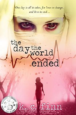 The Day The World Ended (Skin Book 1)