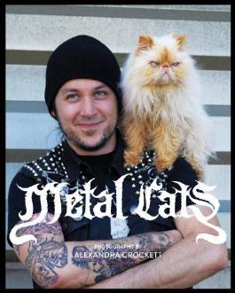 Metal Cats by Alexandra Crockett (8-May-2014) Paperback