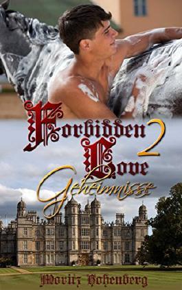 Forbidden Love 2: Geheimnisse (German Edition)