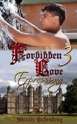 Forbidden Love 3: Erpressung (German Edition)
