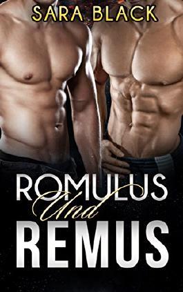 Romulus und Remus (Erotische Dreierbeziehung) (German Edition)