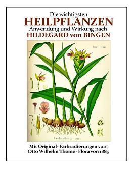 Die wichtigsten Heilpflanzen: Anwendung und Wirkung nach Hildegard von Bingen