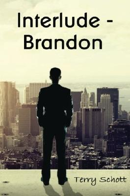 Interlude - Brandon (The Game is Life) by Terry Schott (2013-05-04)