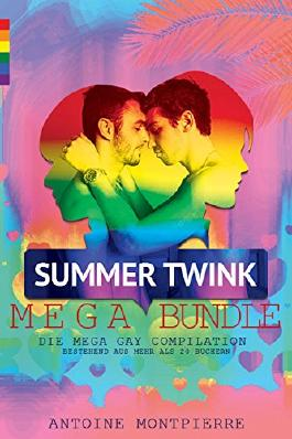 Summer Twink MEGA Bundle [Gay Romance]: Die Mega Gay Compilation
