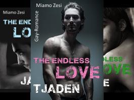 The Endless Love (Reihe in 4 Bänden)