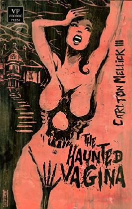 The Haunted Vagina: Bizarro-Fiction