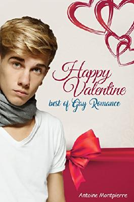 Happy Valentine - Best of Gay Romance!