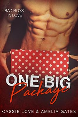 One Big Package: Bad Boys In Love
