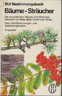 Bäume + [und] Sträucher. Die europäischen Bäume und Sträucher erkennen an Blüte, Blatt, Frucht und Rinde