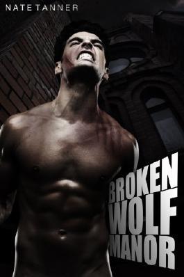 Broken Wolf Manor
