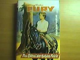 Das Rätsel der hohlen Fichte : Joey u. Fury finden e. geheimnisvolle Kassette.