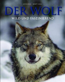 Der Wolf - wild und faszinierend