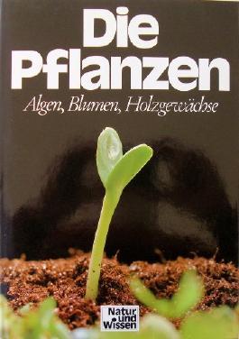 Die Pflanzen: Algen, Blumen, Holzgewächse