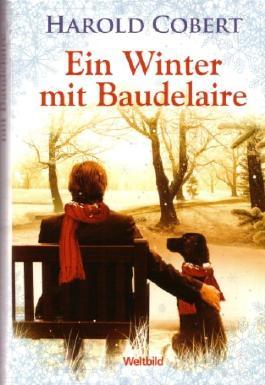 Ein Winter mit Baudelaire. Roman