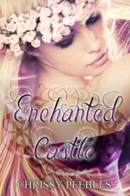 Enchanted Castle - A Novelette (The Enchanted Castle Series)