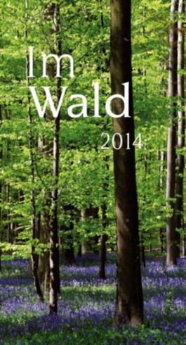 Im Wald 2014
