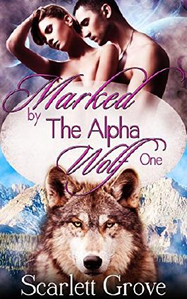 Marked By The Alpha Wolf: Book One (Braving Darkness 1)
