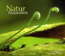 Natur Faszination