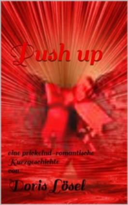 Push up (German Edition)