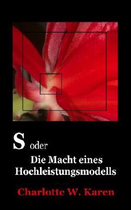 S oder Die Macht eines Hochleistungsmodells: Sechzehn Illusionen
