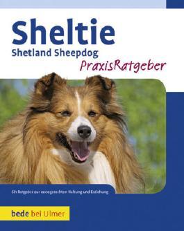 Sheltie, Praxisratgeber