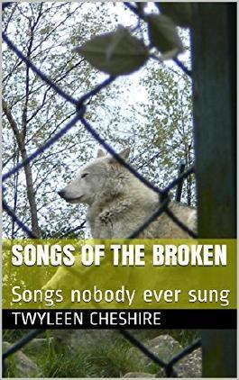 Songs of the broken: Songs nobody ever sung