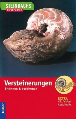 Steinbachs Naturführer Versteinerungen