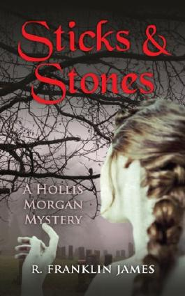 Sticks & Stones (A Hollis Morgan Mystery Book 2)