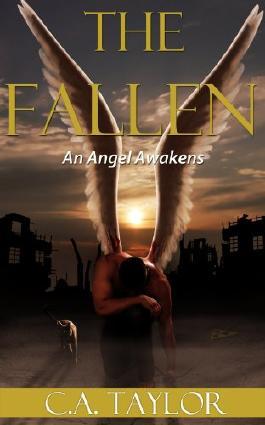 The Fallen: An Angel Awakens (Gay Romance)