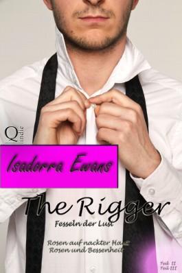 The Rigger 2 u. 3