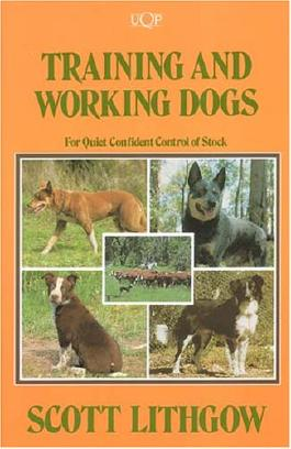 Training and Working Dogs for Quiet Confident Control of Stock