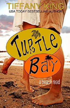 Turtle Bay: a beach read (Seasons of Love Book 1)