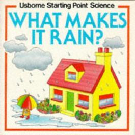 What Makes it Rain? (Usborne Starting Point Science)