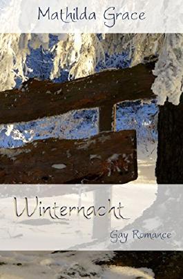 Winternacht (Gezeiten der Liebe 5)