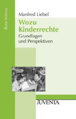 Wozu Kinderrechte: Grundlagen und Perspektiven (Reihe Votum)