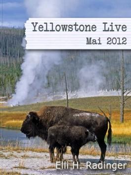 Yellowstone Live: Mai 2012