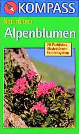 Alpenblumen sehen und verstehen