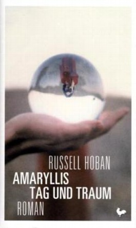 Amaryllis Tag und Traum