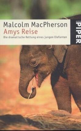 Amys Reise