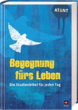"""Begegnung fürs Leben, Motiv """"Taube blau"""""""